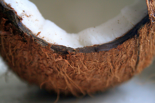 Eating coconuts